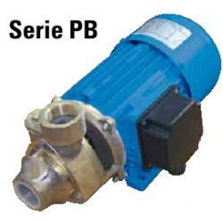 BƠM NGOẠI VI ĐIỆN MỘT CHIỀU PB Series